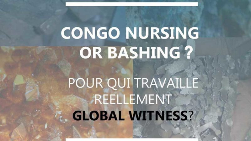 "CONGO NURSING or BASHING : ""POUR QUI TRAVAILLE REELLEMENT GLOBAL WITNES? """